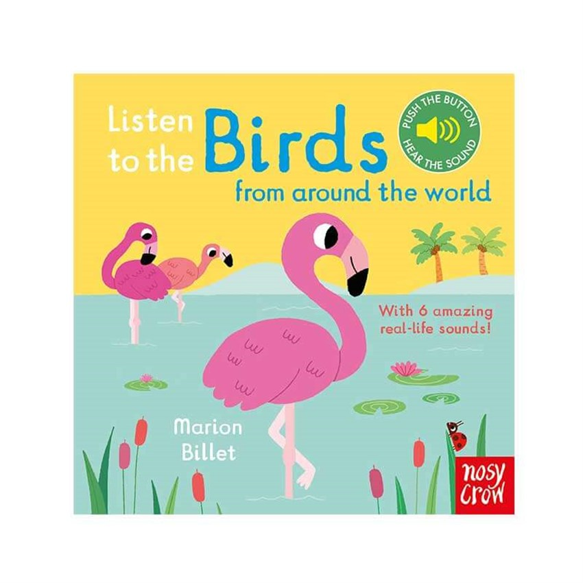 Listen To the Birds Around World