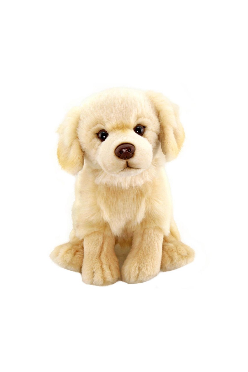 Peluş 28 cm Floppy Golden Retriever